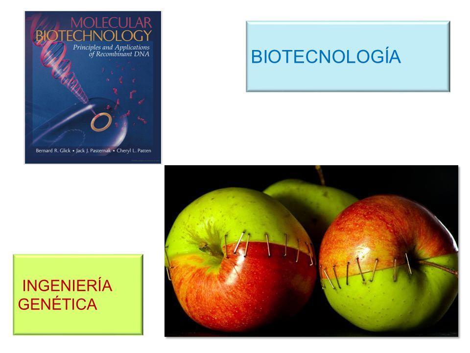 BIOTECNOLOGÍA INGENIERÍA GENÉTICA