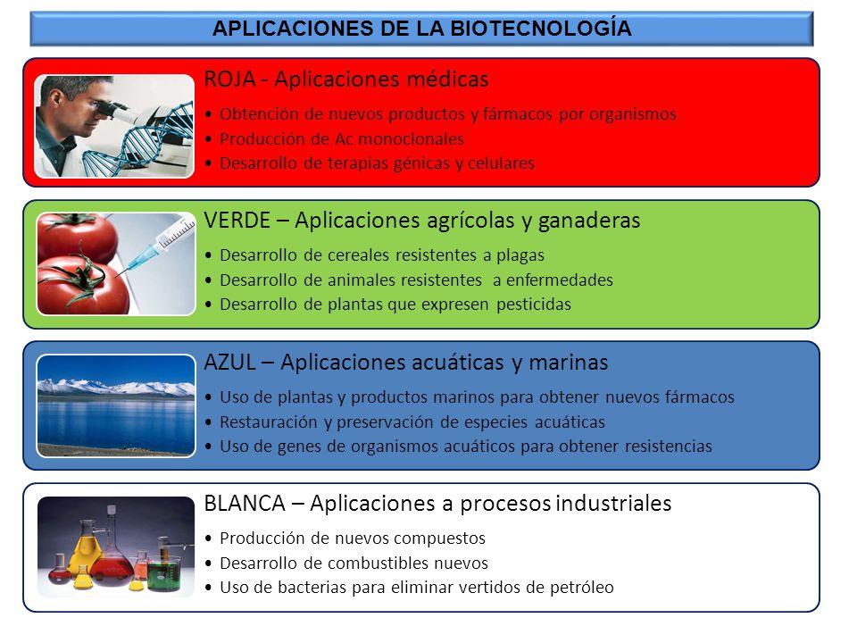 ROJA - Aplicaciones médicas Obtención de nuevos productos y fármacos por organismos Producción de Ac monoclonales Desarrollo de terapias génicas y cel