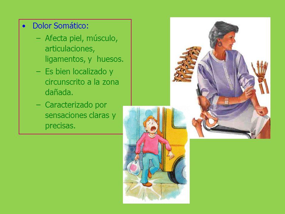 Dolor Somático: –Afecta piel, músculo, articulaciones, ligamentos, y huesos. –Es bien localizado y circunscrito a la zona dañada. –Caracterizado por s