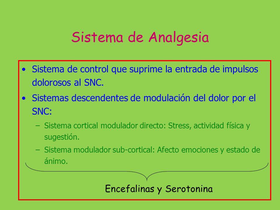 Sistema de Analgesia Sistema de control que suprime la entrada de impulsos dolorosos al SNC. Sistemas descendentes de modulación del dolor por el SNC: