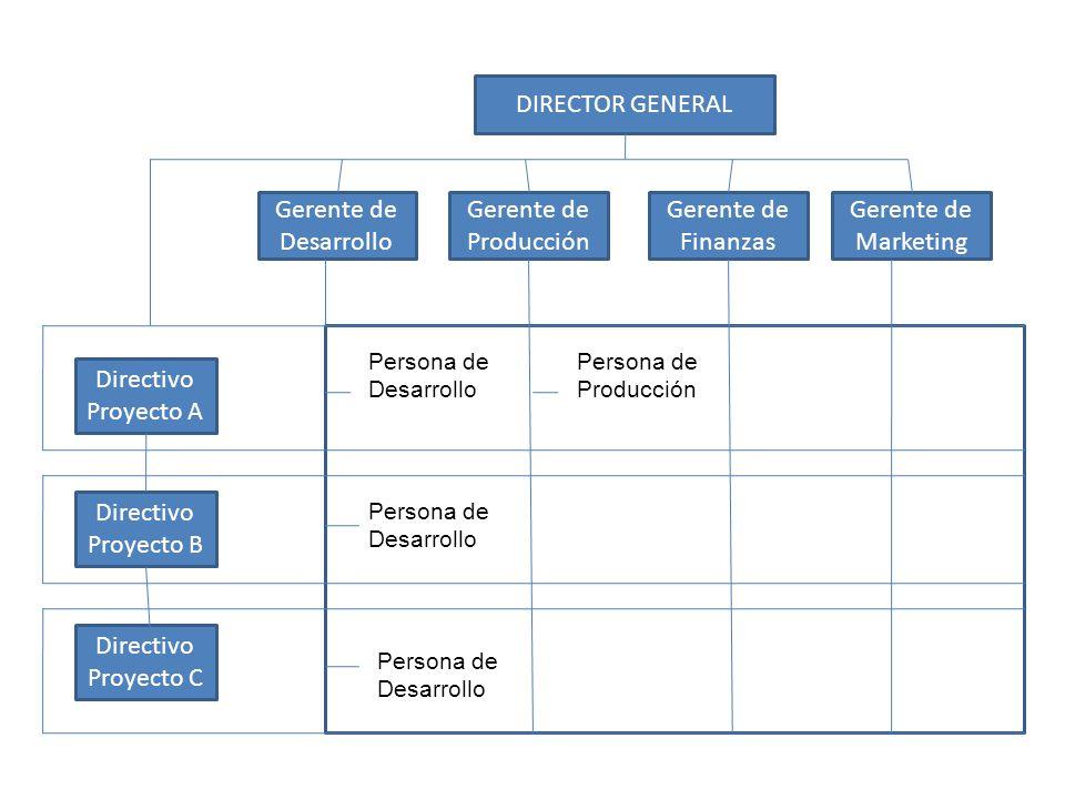 DIRECTOR GENERAL Gerente de Desarrollo Gerente de Producción Gerente de Finanzas Gerente de Marketing Directivo Proyecto A Directivo Proyecto B Direct
