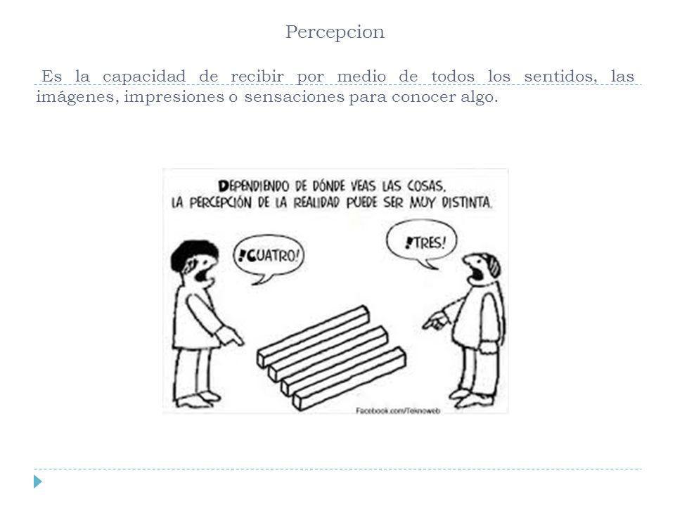 Percepcion Es la capacidad de recibir por medio de todos los sentidos, las imágenes, impresiones o sensaciones para conocer algo.