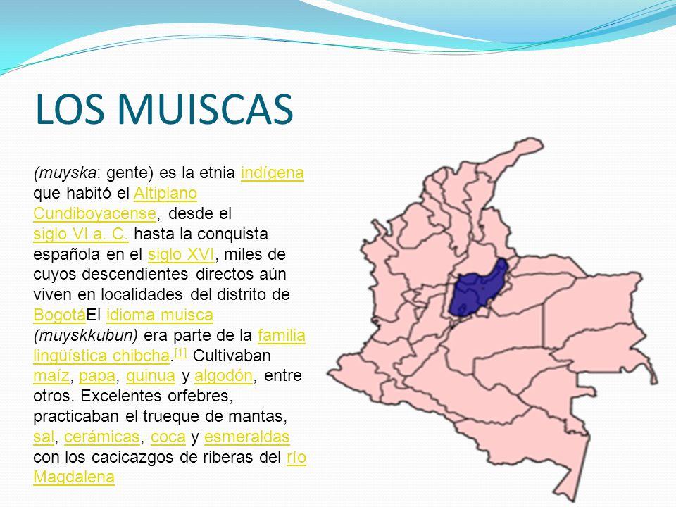 LOS MUISCAS (muyska: gente) es la etnia indígena que habitó el Altiplano Cundiboyacense, desde el siglo VI a.