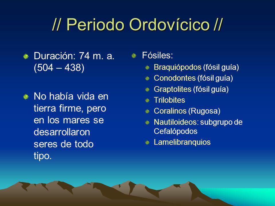// Periodo Ordovícico // Duración: 74 m.a.