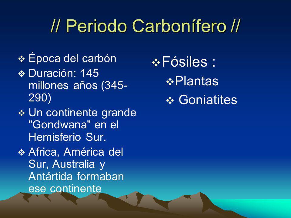 // Periodo Carbonífero // Época del carbón Duración: 145 millones años (345- 290) Un continente grande Gondwana en el Hemisferio Sur.