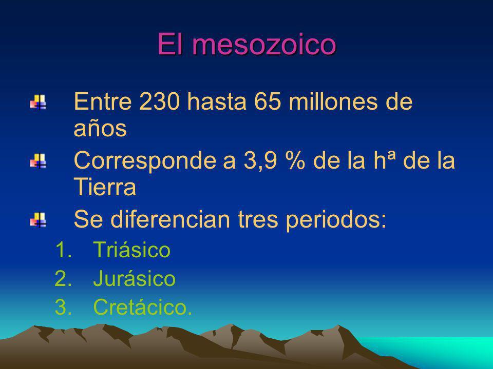 El mesozoico Entre 230 hasta 65 millones de años Corresponde a 3,9 % de la hª de la Tierra Se diferencian tres periodos: 1.Triásico 2.Jurásico 3.Cretácico.