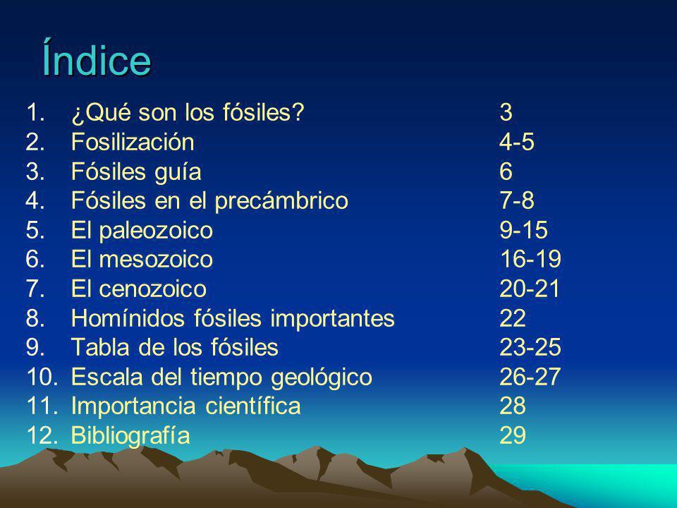 // Periodo Devónico // Duracion: 135 m.