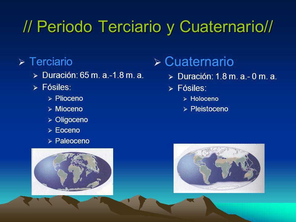 // Periodo Terciario y Cuaternario// Terciario Duración: 65 m.