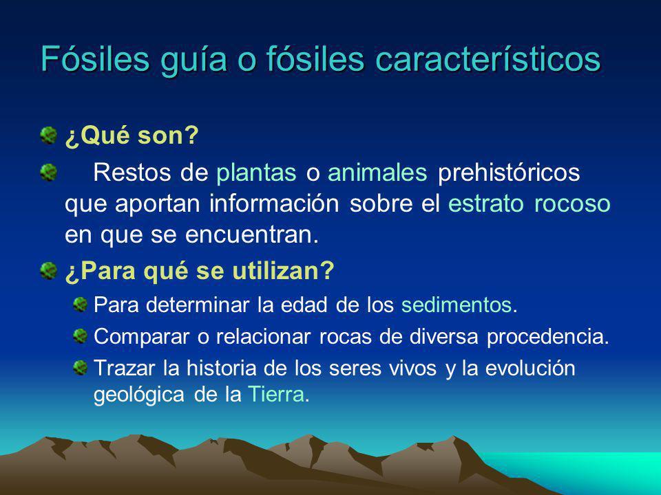 Fósiles en el precámbrico Era primaria Duración: 87% del total (4500-570 m.