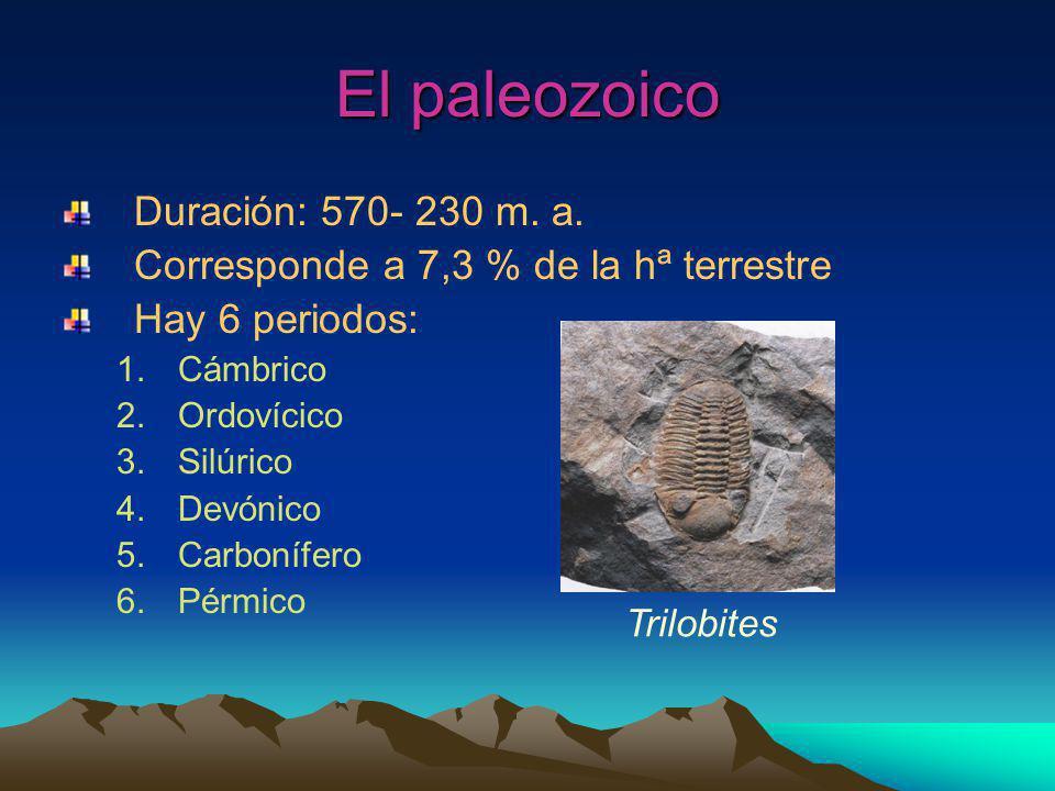 El paleozoico Duración: 570- 230 m.a.