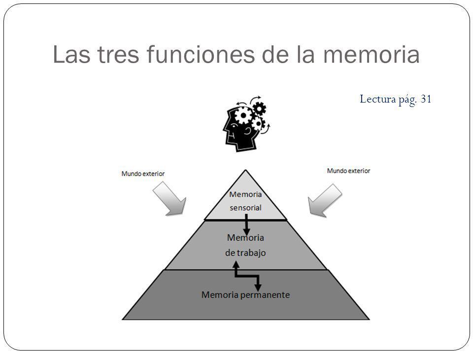Las tres funciones de la memoria Lectura pág. 31
