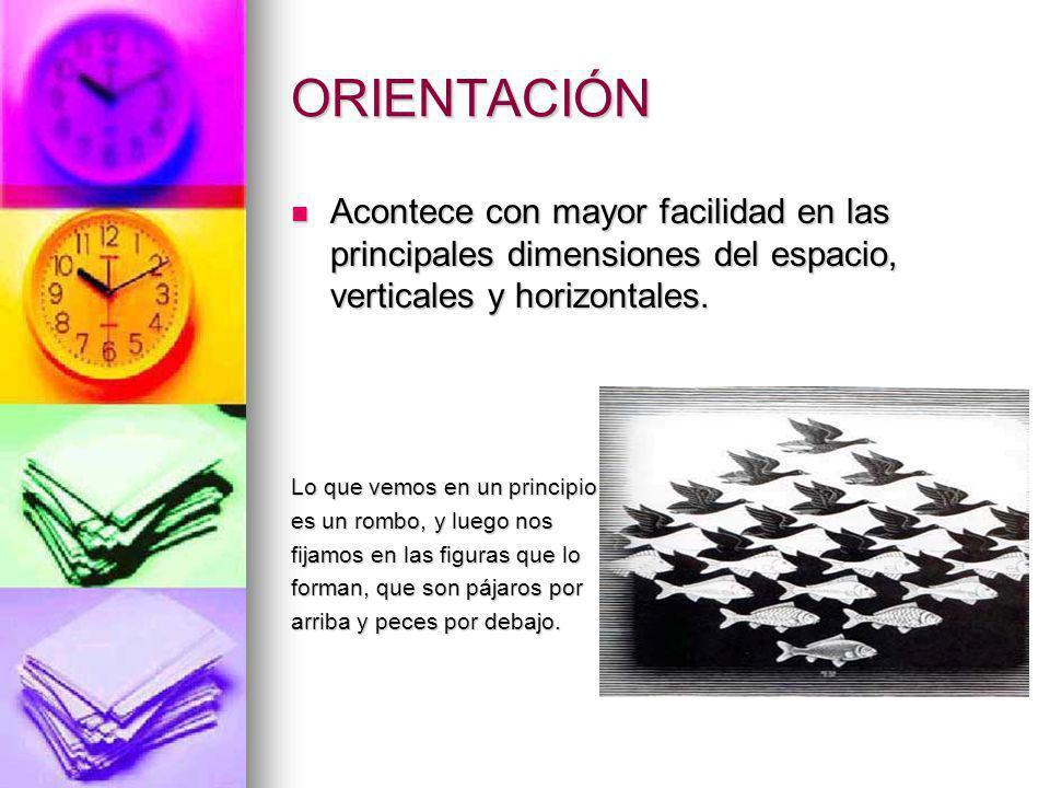 DE PROFUNDIDAD Disparidad retinal.Disparidad retinal.