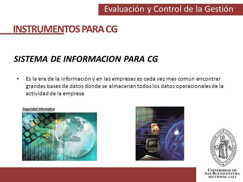 Evaluación y Control de la Gestión INSTRUMENTOS PARA CG SISTEMA DE INFORMACION PARA CG Es la era de la información y en las empresas es cada vez mas c