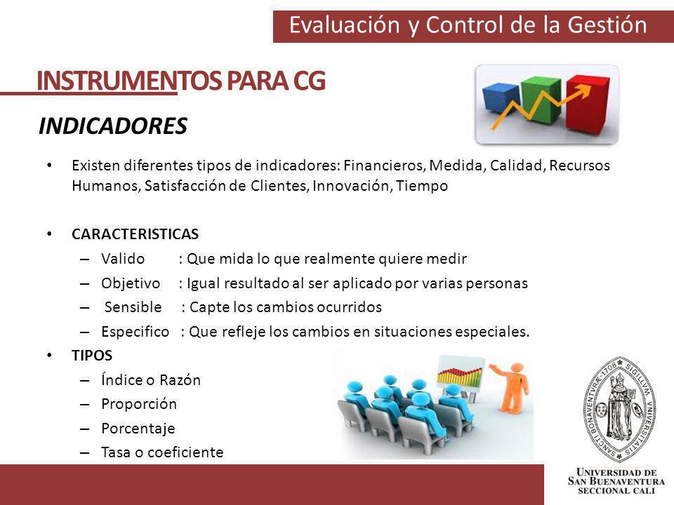 Evaluación y Control de la Gestión INSTRUMENTOS PARA CG INDICADORES Existen diferentes tipos de indicadores: Financieros, Medida, Calidad, Recursos Hu