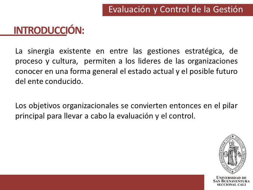 Evaluación y Control de la Gestión La sinergia existente en entre las gestiones estratégica, de proceso y cultura, permiten a los lideres de las organ