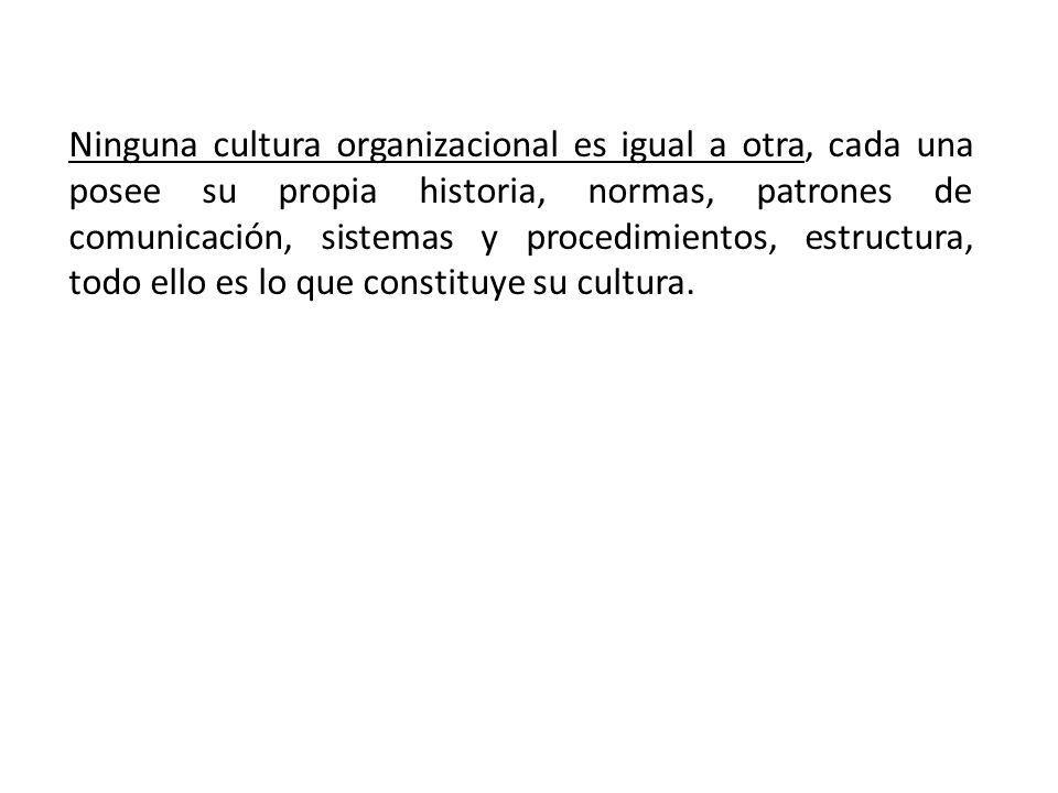 Ninguna cultura organizacional es igual a otra, cada una posee su propia historia, normas, patrones de comunicación, sistemas y procedimientos, estruc