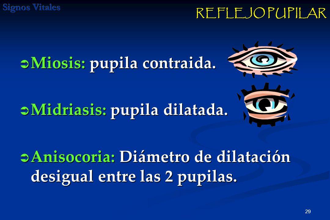 30 Pupilas dilatadas que no reaccionan ante la luz puede ser indicativo de muerte cerebral o lesión cerebral severa.