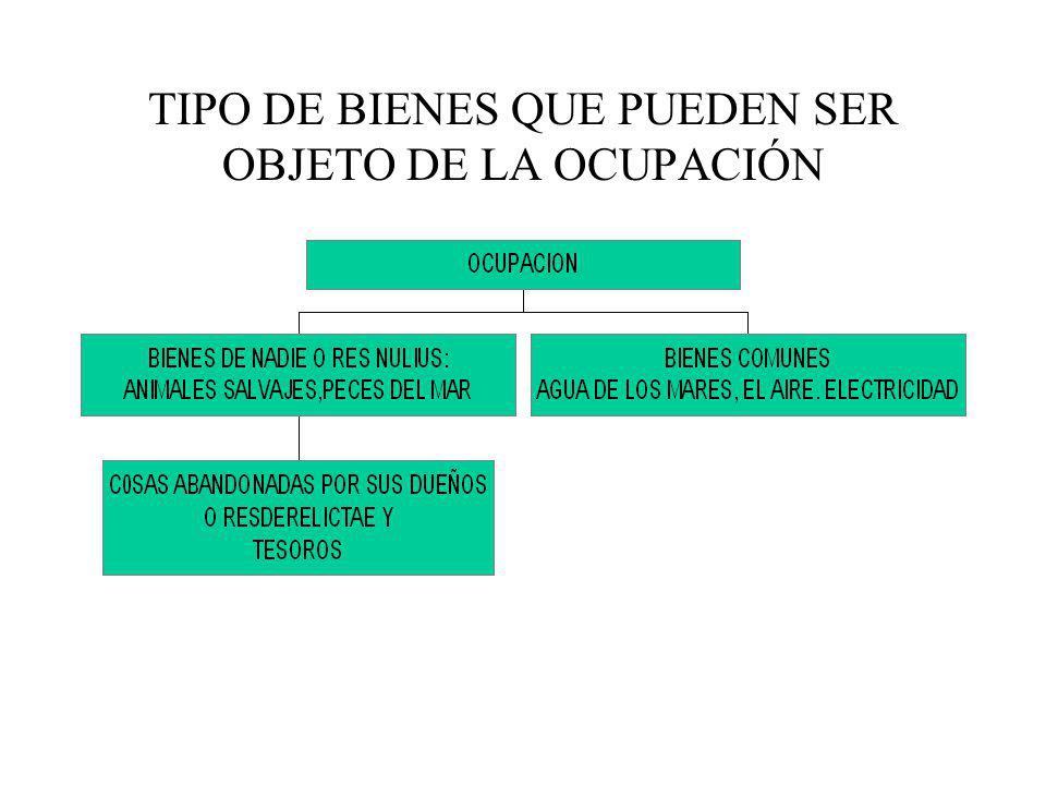 TIPO DE BIENES QUE PUEDEN SER OBJETO DE LA OCUPACIÓN