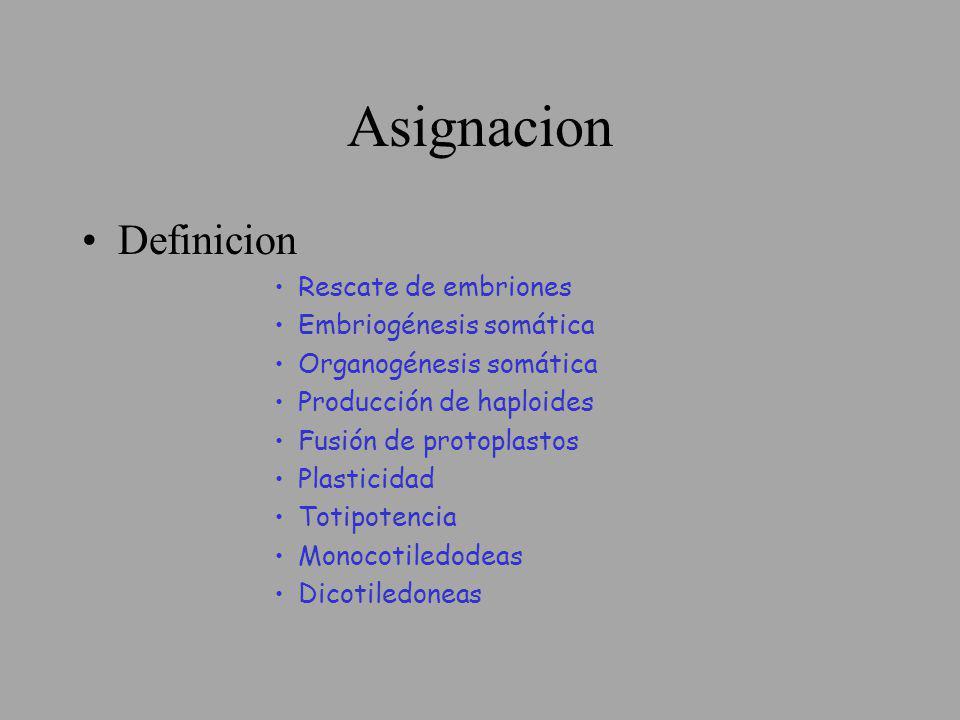 Asignacion Definicion Rescate de embriones Embriogénesis somática Organogénesis somática Producción de haploides Fusión de protoplastos Plasticidad To