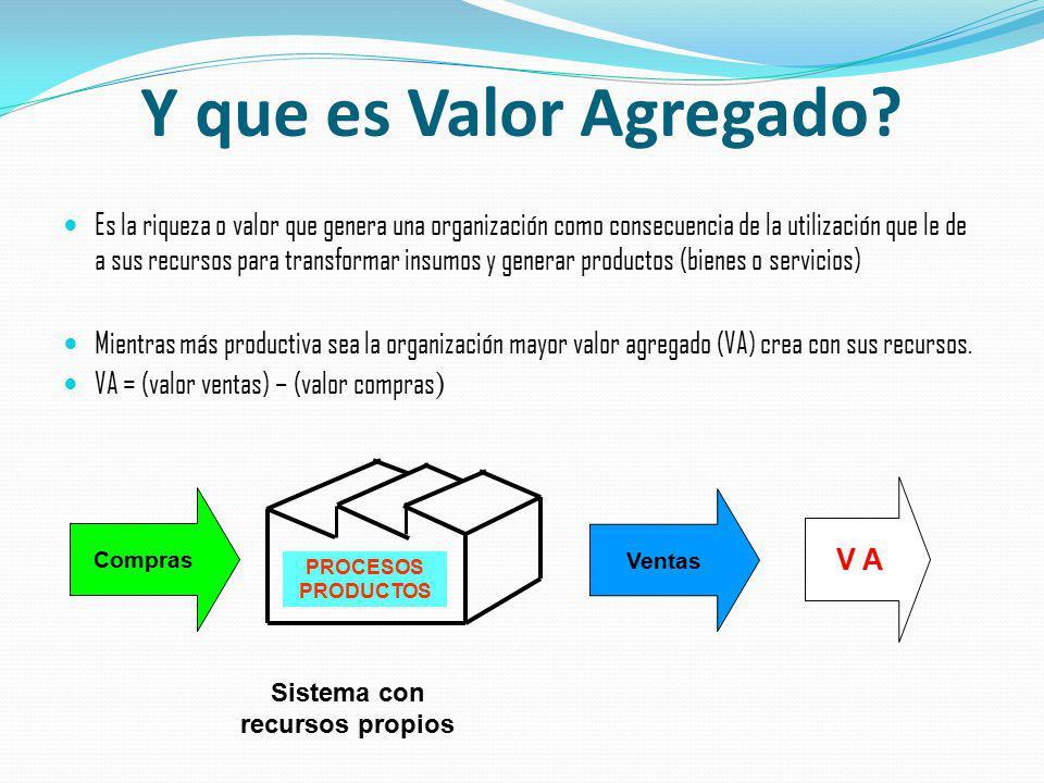 Y que es Valor Agregado? Es la riqueza o valor que genera una organización como consecuencia de la utilización que le de a sus recursos para transform