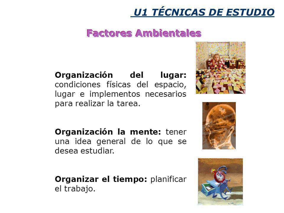 U1 TÉCNICAS DE ESTUDIO Factores Ambientales Organización del lugar: condiciones físicas del espacio, lugar e implementos necesarios para realizar la tarea.