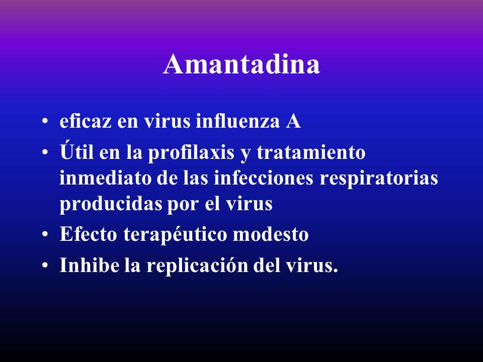 Amantadina eficaz en virus influenza A Útil en la profilaxis y tratamiento inmediato de las infecciones respiratorias producidas por el virus Efecto t