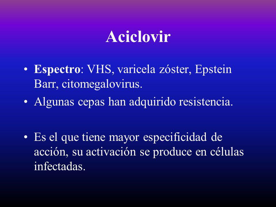 Aciclovir Espectro: VHS, varicela zóster, Epstein Barr, citomegalovirus. Algunas cepas han adquirido resistencia. Es el que tiene mayor especificidad