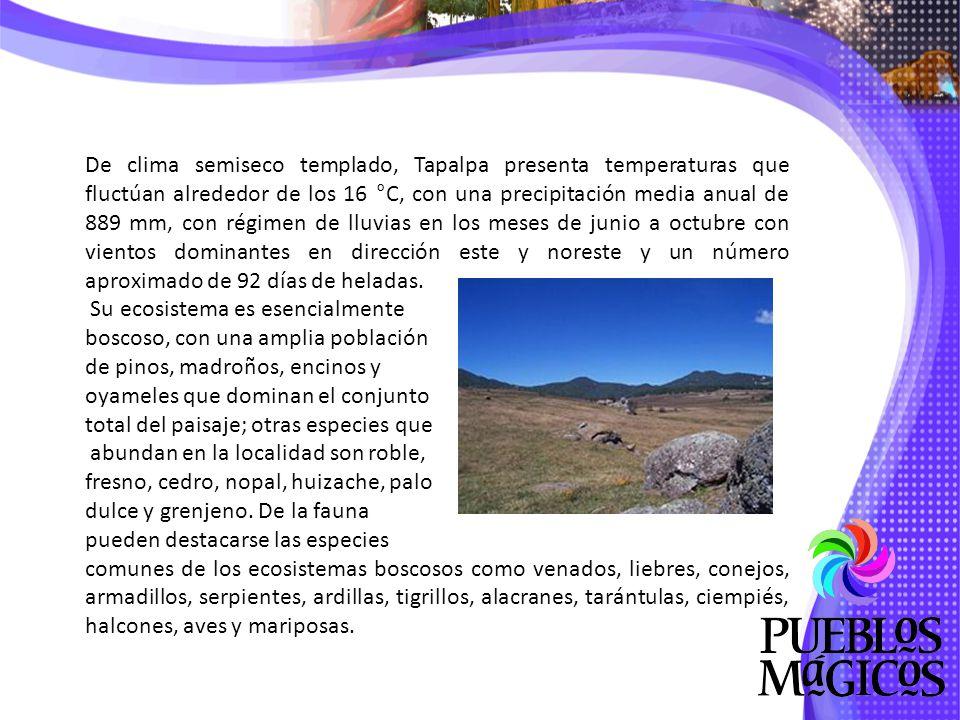 Sitios de interés: Con un amplio bagaje de historia, un clima que armoniza la exuberante vegetación con los fríos de la montaña, Cuetzalan es un lugar para quedarse.