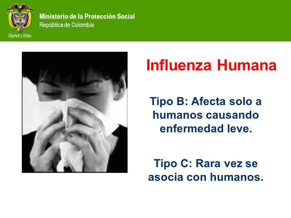 Ministerio de la Protección Social República de Colombia Tipo B: Afecta solo a humanos causando enfermedad leve. Tipo C: Rara vez se asocia con humano