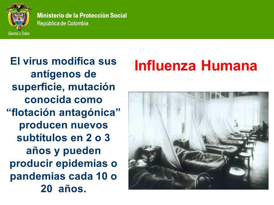 Ministerio de la Protección Social República de Colombia El virus modifica sus antígenos de superficie, mutación conocida como flotación antagónica producen nuevos subtítulos en 2 o 3 años y pueden producir epidemias o pandemias cada 10 o 20 años.