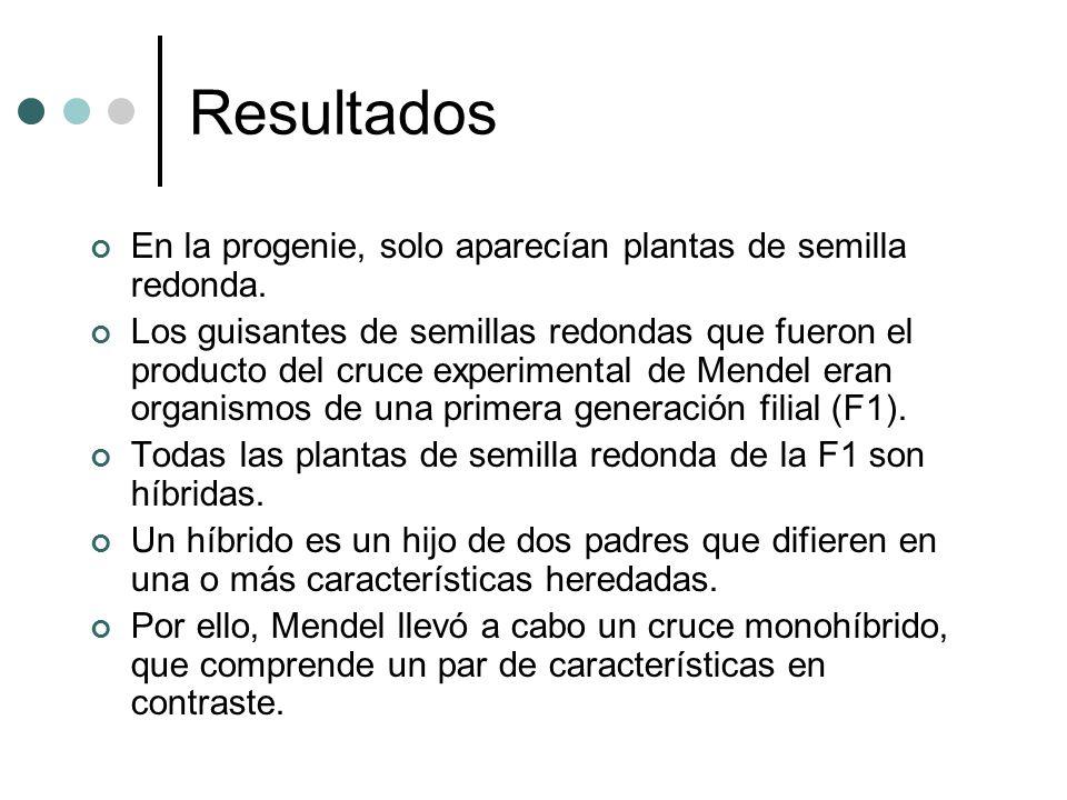 Resultados En la progenie, solo aparecían plantas de semilla redonda. Los guisantes de semillas redondas que fueron el producto del cruce experimental