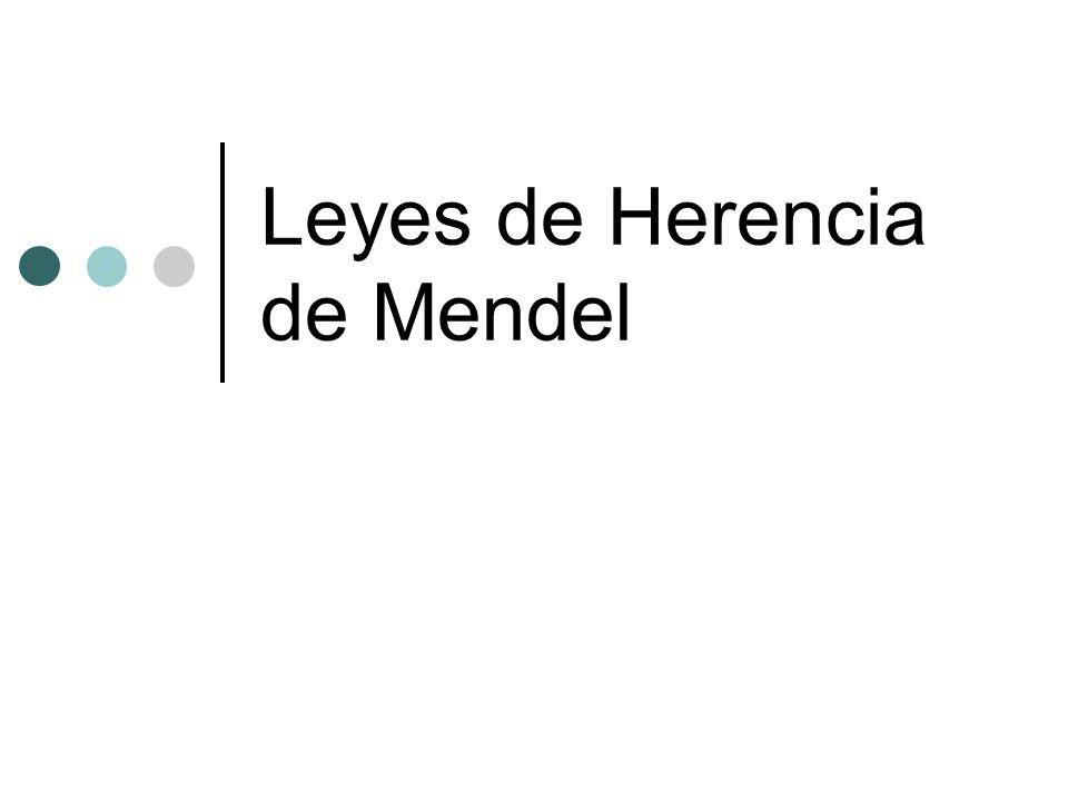 Leyes de Herencia de Mendel
