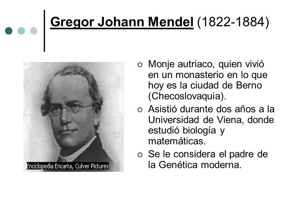Gregor Johann Mendel (1822-1884) Monje autriaco, quien vivió en un monasterio en lo que hoy es la ciudad de Berno (Checoslovaquia). Asistió durante do