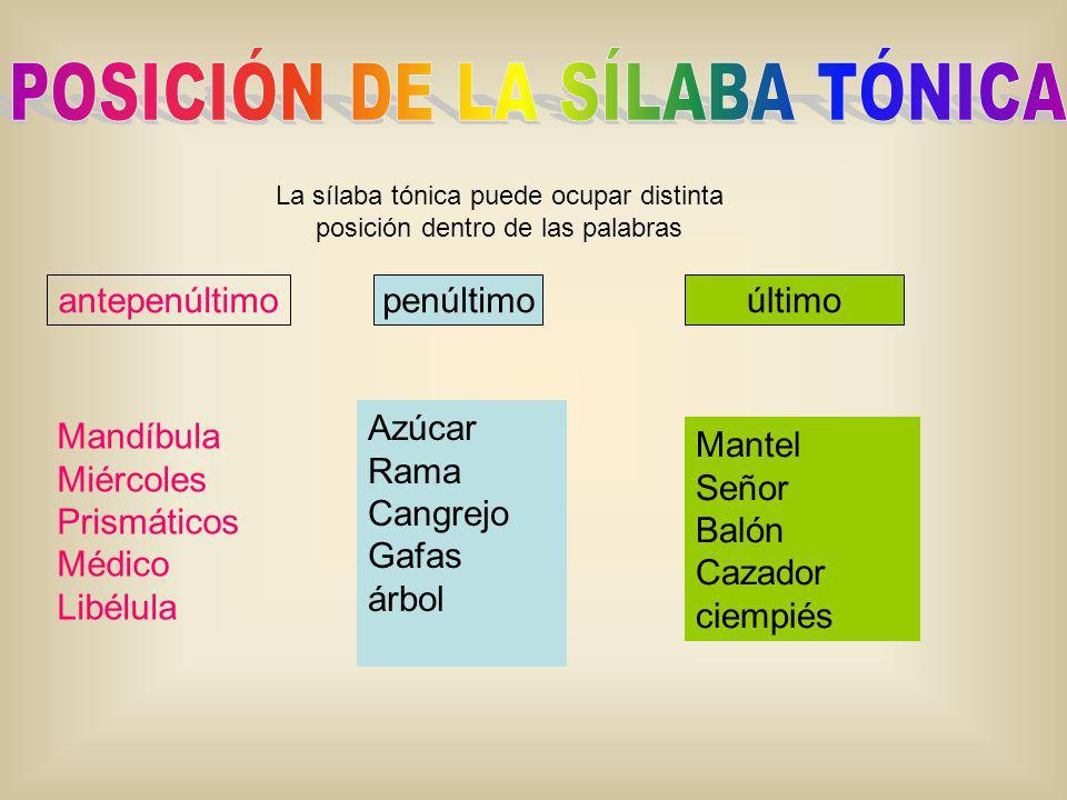 La sílaba tónica puede ocupar distinta posición dentro de las palabras antepenúltimo penúltimoúltimo Mandíbula Miércoles Prismáticos Médico Libélula A