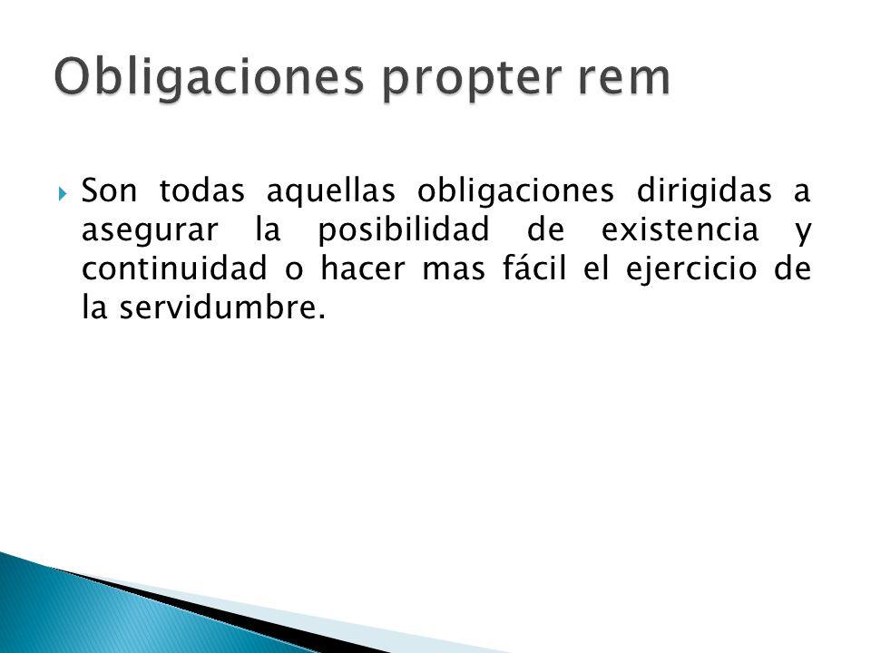 Son todas aquellas obligaciones dirigidas a asegurar la posibilidad de existencia y continuidad o hacer mas fácil el ejercicio de la servidumbre.