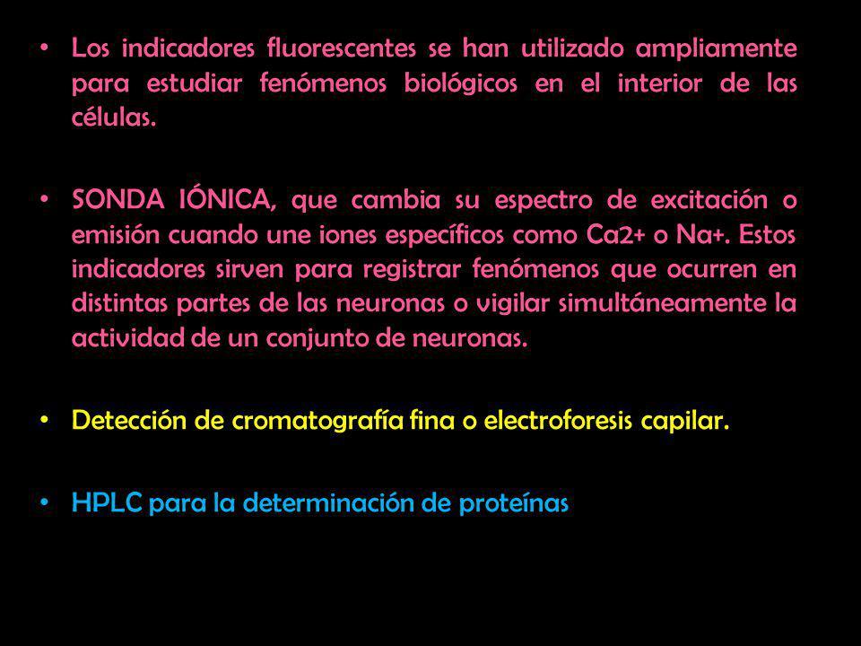 Los indicadores fluorescentes se han utilizado ampliamente para estudiar fenómenos biológicos en el interior de las células. SONDA IÓNICA, que cambia