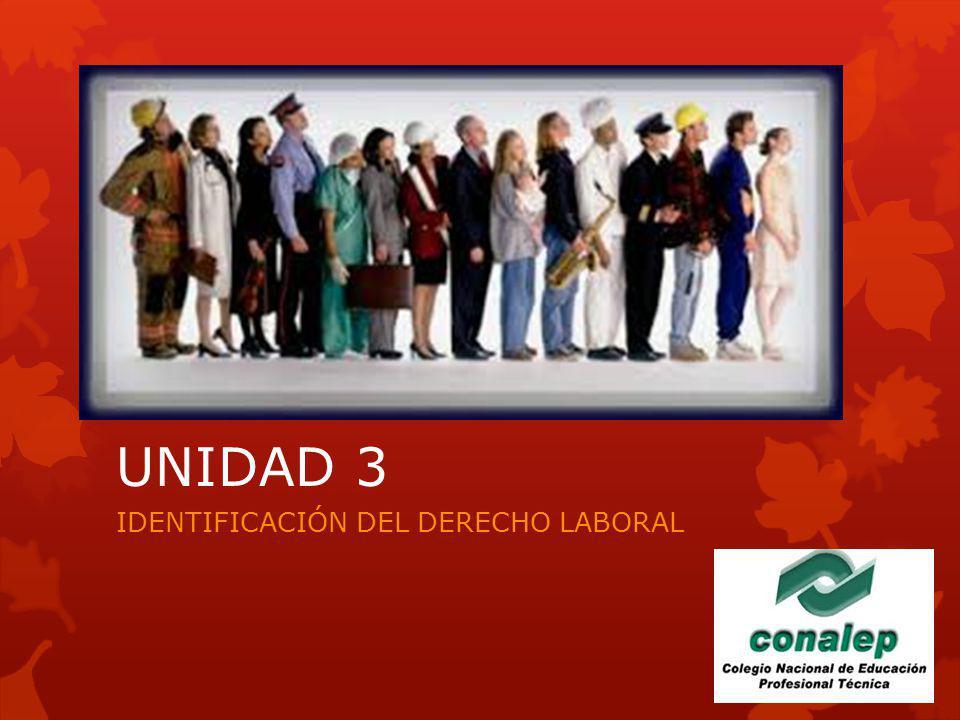 UNIDAD 3 IDENTIFICACIÓN DEL DERECHO LABORAL