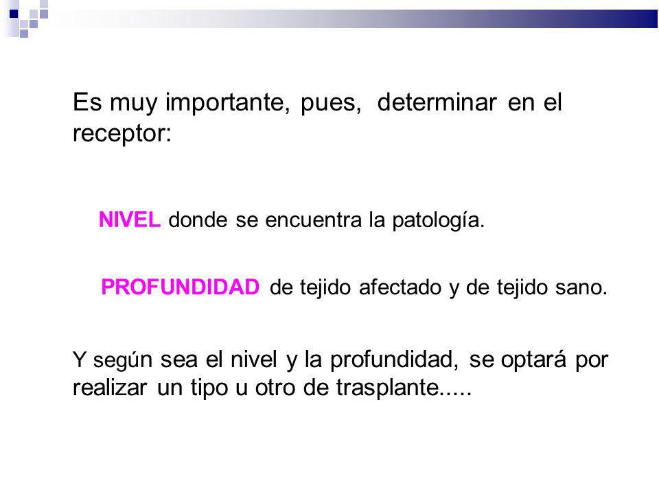 Es muy importante, pues, determinar en el receptor: NIVEL donde se encuentra la patología. PROFUNDIDAD de tejido afectado y de tejido sano. Y segú n s