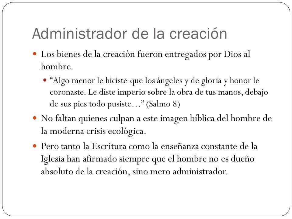 Administrador de la creación Los bienes de la creación fueron entregados por Dios al hombre.