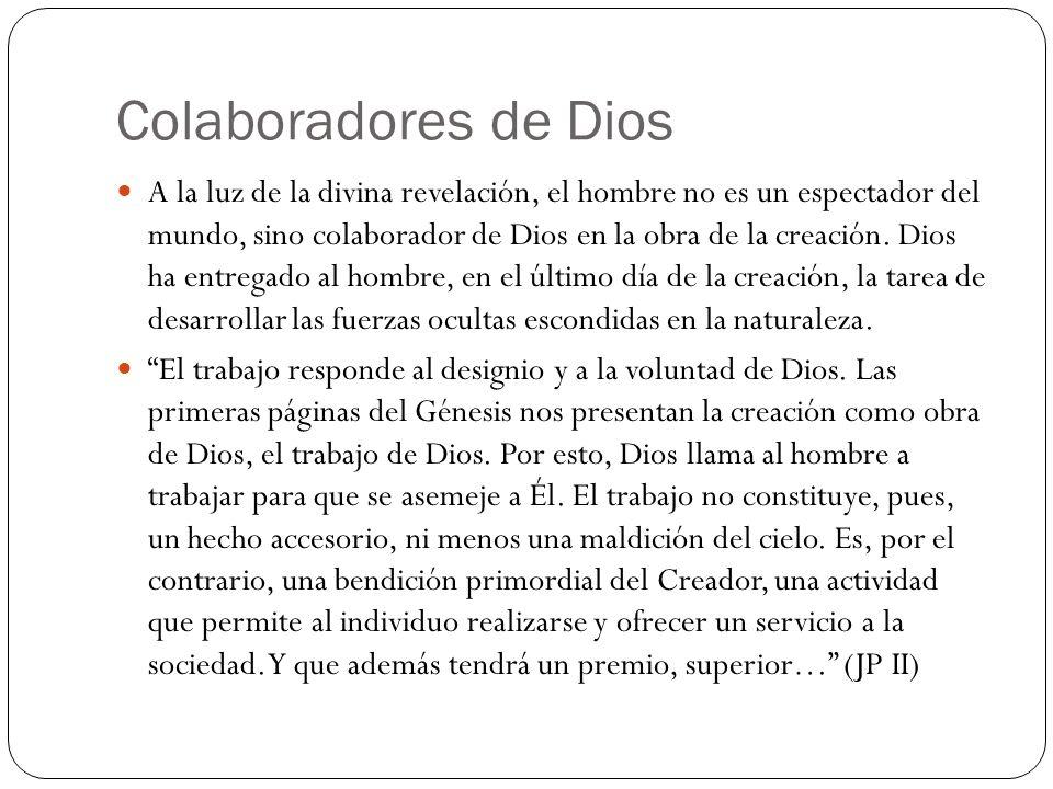 Colaboradores de Dios A la luz de la divina revelación, el hombre no es un espectador del mundo, sino colaborador de Dios en la obra de la creación. D