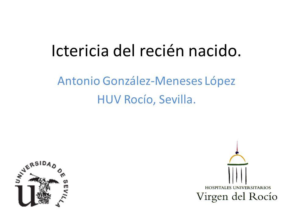 Ictericia del recién nacido. Antonio González-Meneses López HUV Rocío, Sevilla.