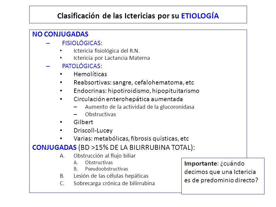 Clasificación de las Ictericias por su ETIOLOGÍA NO CONJUGADAS – FISIOLÓGICAS: Ictericia fisiológica del R.N.
