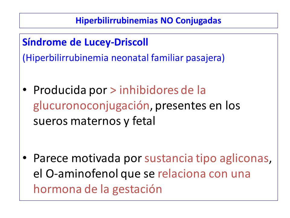Síndrome de Lucey-Driscoll (Hiperbilirrubinemia neonatal familiar pasajera) Producida por > inhibidores de la glucuronoconjugación, presentes en los sueros maternos y fetal Parece motivada por sustancia tipo agliconas, el O-aminofenol que se relaciona con una hormona de la gestación Hiperbilirrubinemias NO Conjugadas