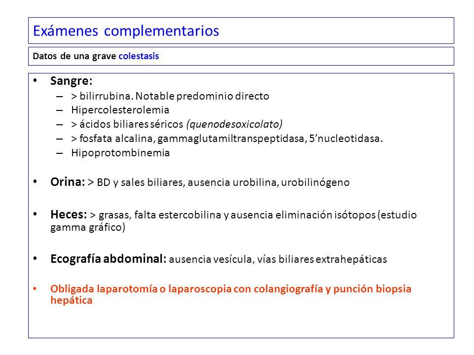 Exámenes complementarios Sangre: – > bilirrubina.