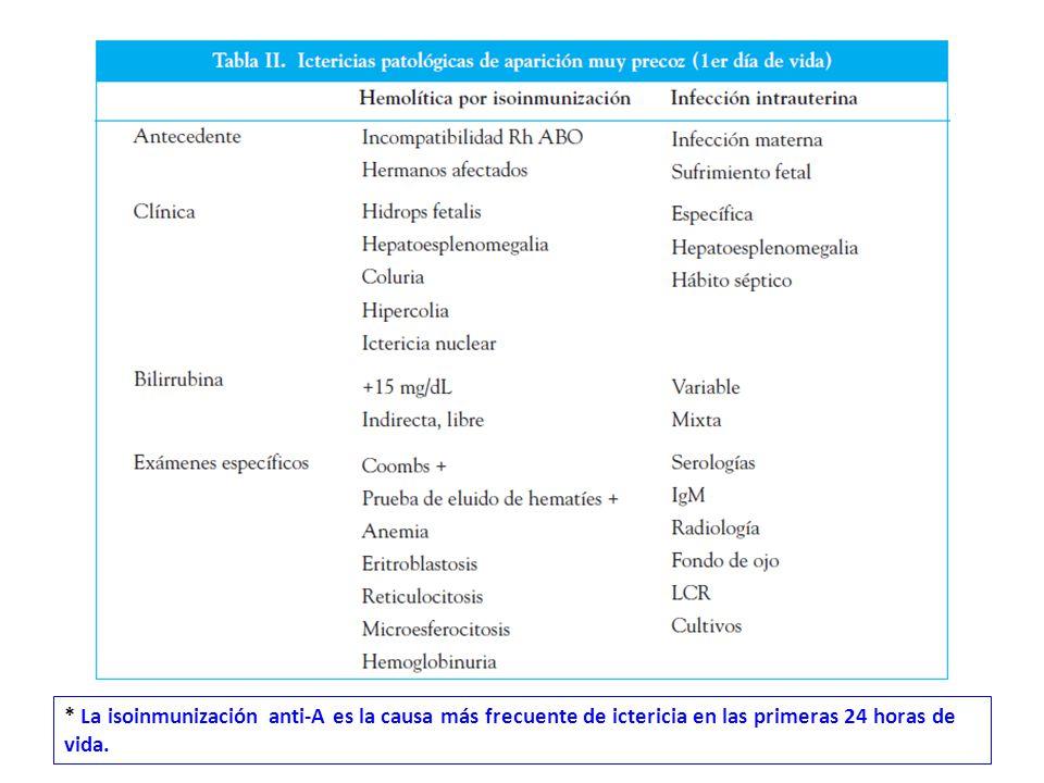 * La isoinmunización anti-A es la causa más frecuente de ictericia en las primeras 24 horas de vida.