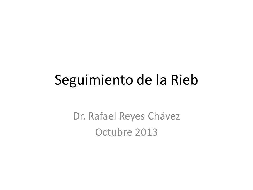 Seguimiento de la Rieb Dr. Rafael Reyes Chávez Octubre 2013