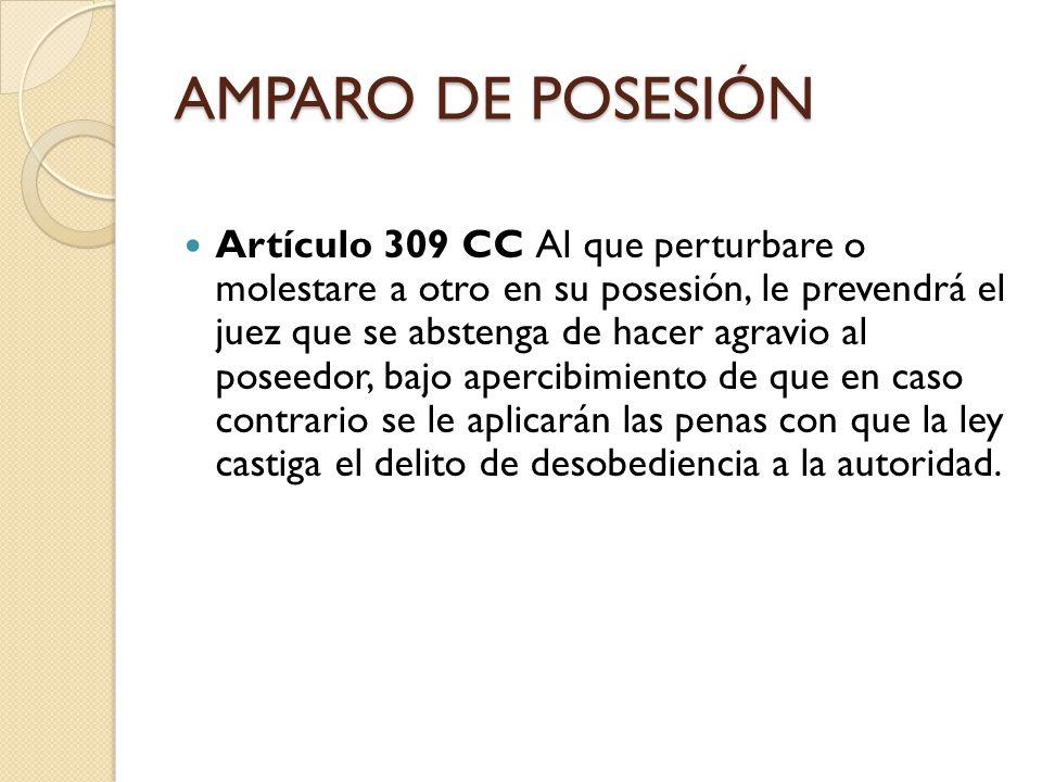 AMPARO DE POSESIÓN Artículo 463 CPC Sentencia.