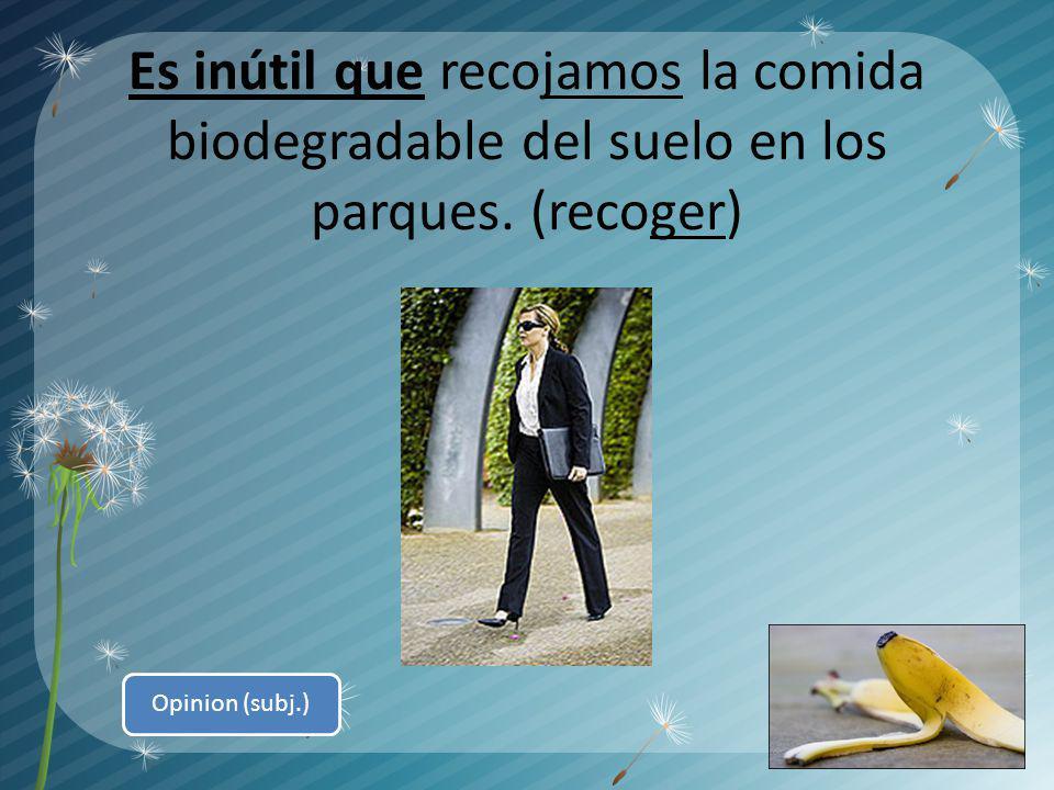 Es inútil que recojamos la comida biodegradable del suelo en los parques. (recoger) Opinion (subj.)