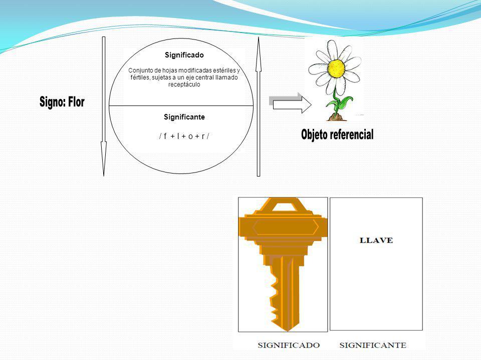 Significado Conjunto de hojas modificadas estériles y fértiles, sujetas a un eje central llamado receptáculo Significante / f + l + o + r /