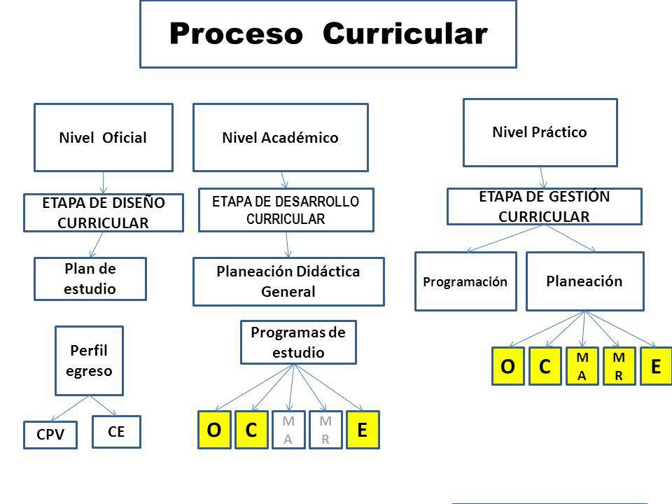 Proceso Curricular Nivel OficialNivel Académico Nivel Práctico Planeación Didáctica General Programación Planeación CPV Perfil egreso ETAPA DE GESTIÓN